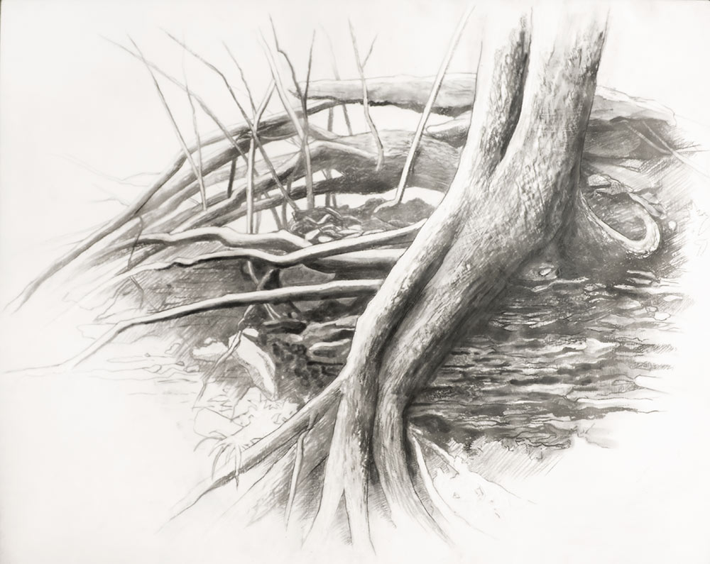 Roots with Rocks, Along 801/ charcoal with Encaustic on Wood / 40 x 32 in with thin dark brown frame